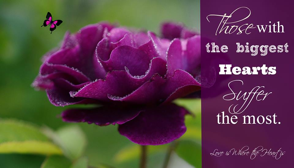 Quotes About Purple Roses Quotesgram