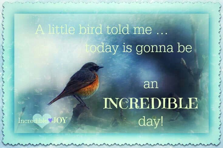 Quotes About Love And Birds Quotesgram: Little Bird Quotes. QuotesGram