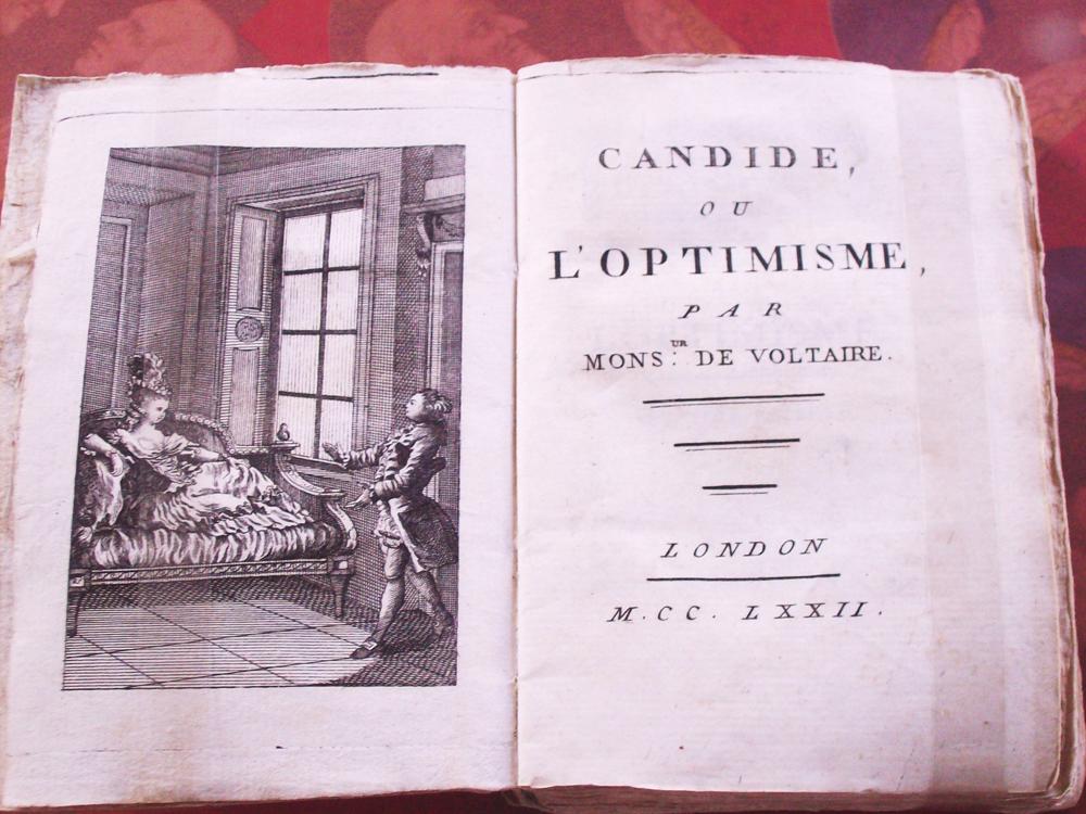 Candide Essays