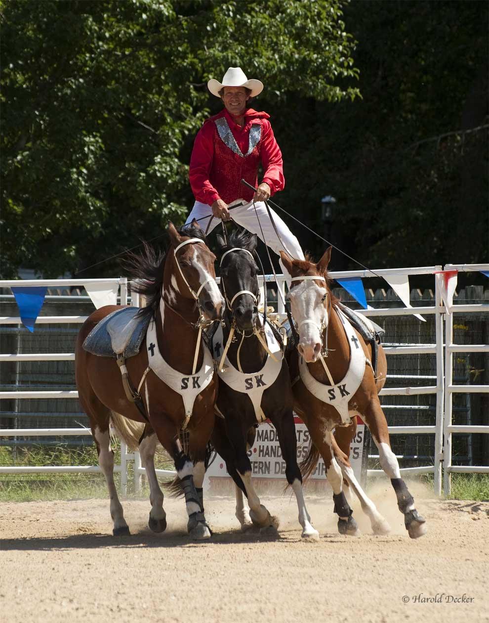 Trick Riding I Love Quotes Quotesgram