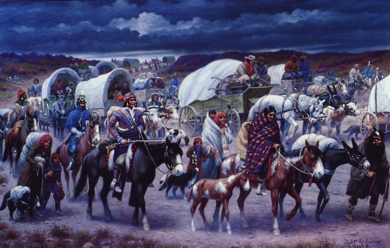 the history and purpose of the indian removal act 1830 indian removal act for kids andrew jackson was the 7th american president who served in office from march 4, 1829 to march 4, 1837 one of the important events during his presidency was the 1830 indian removal act.