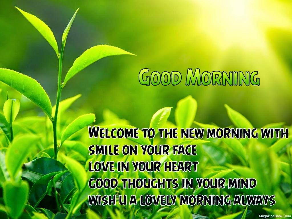 Good Morning Beautiful Quotes Quotesgram
