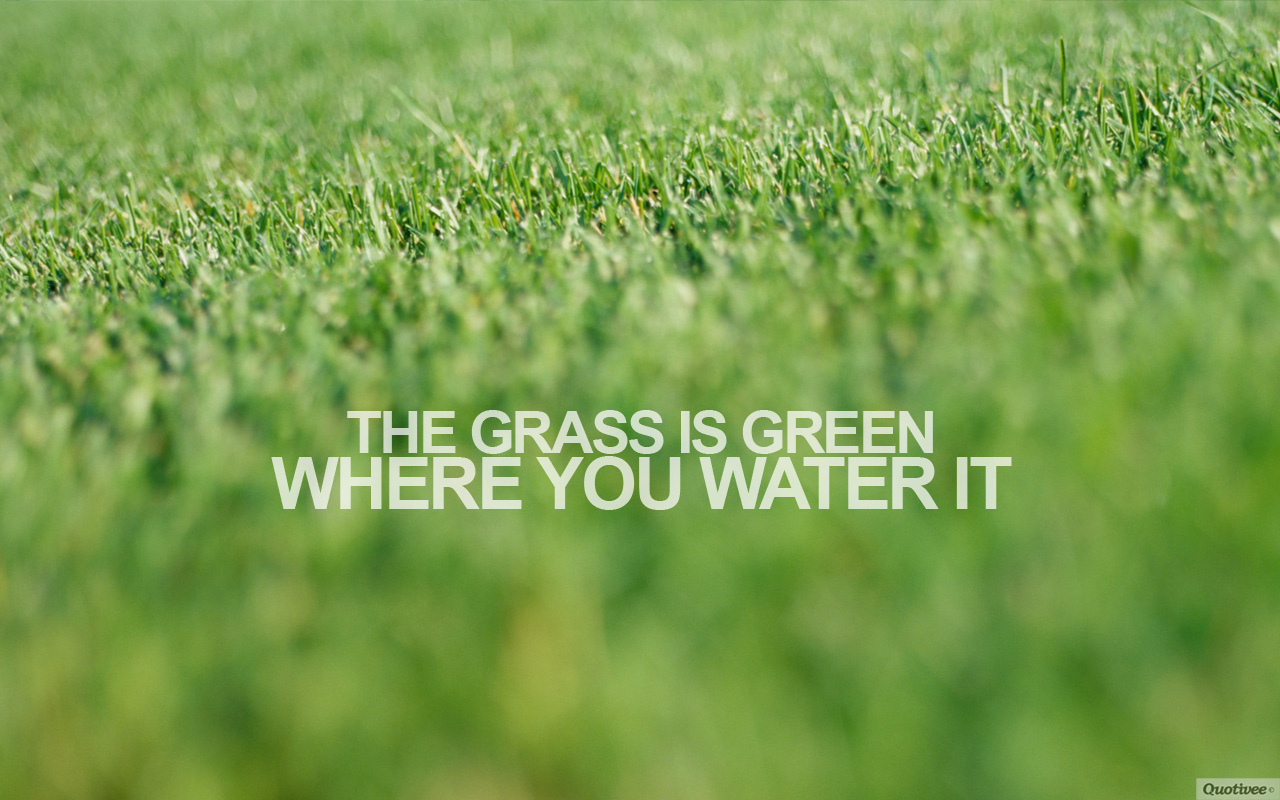 Grass Is Always Greener Quotes: Funny Quotes About Grass. QuotesGram