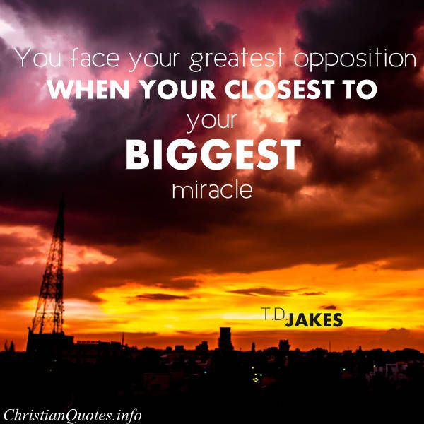 Motivational Inspirational Quotes: Facing Opposition Quotes. QuotesGram