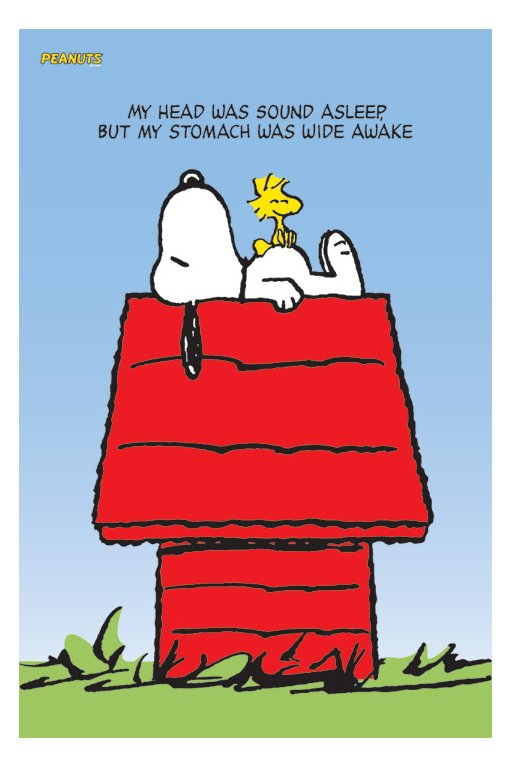 Quotes Snoopy And Woodstock Quotesgram