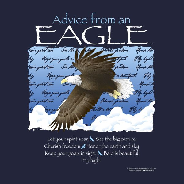 Philadelphia Eagles Quotes >> Eagle Quotes And Sayings. QuotesGram
