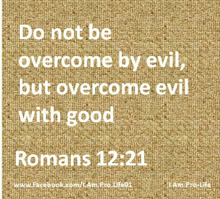 evil prevails over good Not true evil prevails because good people do nothing  i'm done i support our country over nike  when evil men plot, good men must plan when evil men.