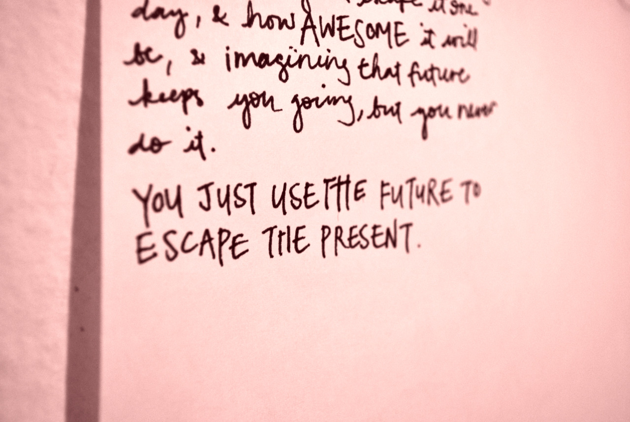 Looking For Alaska Daisy: Daisy Looking For Alaska Quotes. QuotesGram