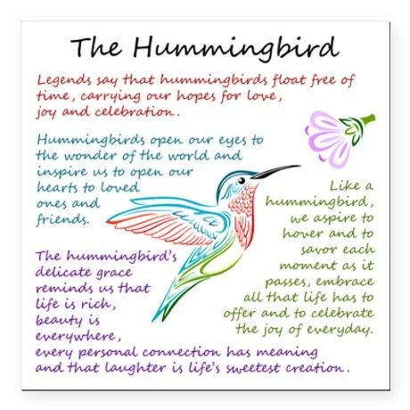 inspirational hummingbird quotes quotesgram