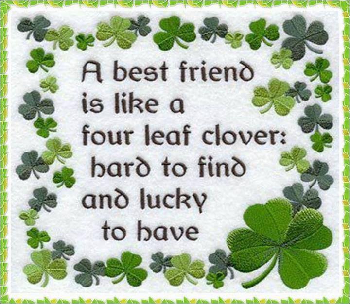 Serious Best Friend Quotes. QuotesGram