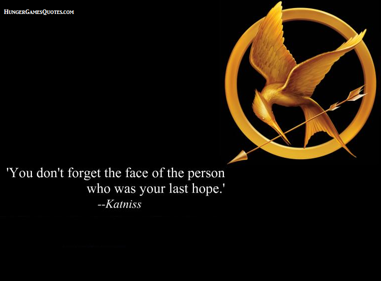 hunger games power of appearance essay Essay on obsession with looks and appearance in the hunger games 2166  words 9 pages appearance and fashion are important factors that drive our.