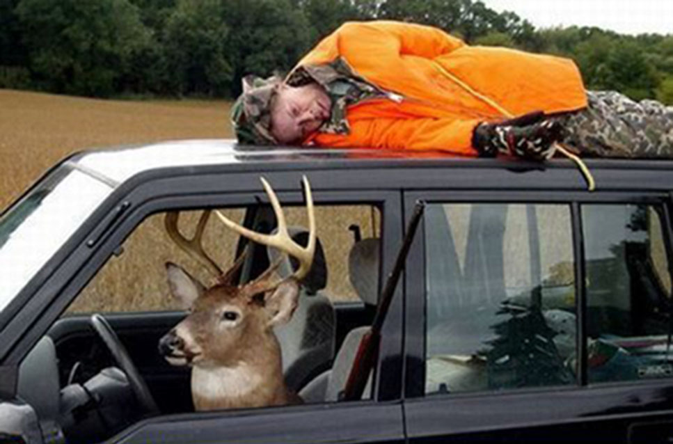 Funny Quotes About Hunting Deer Quotesgram