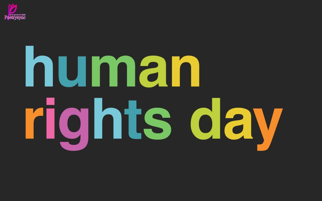 Human Rights Day Quotes Quotesgram