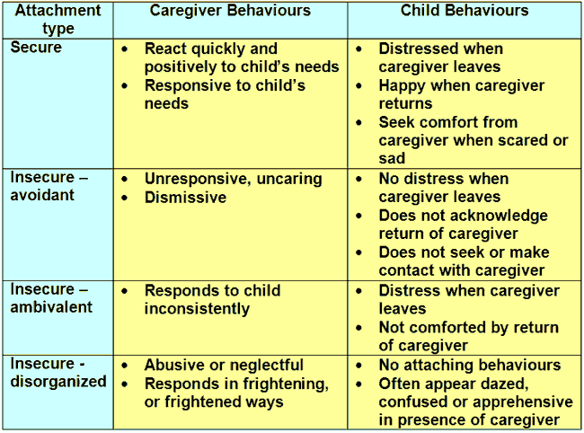 attachment theory childrens attachment to a According to the theory, attachment is the deep and enduring emotional connection established between a child and carer in the first few years of life the quality.