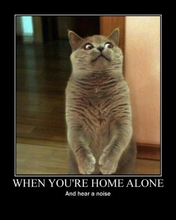 Home Alone Funny Quotes. QuotesGram