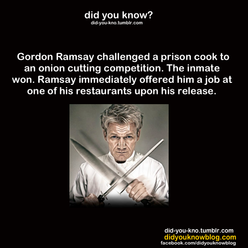 Gordon Ramsay Angry Quotes