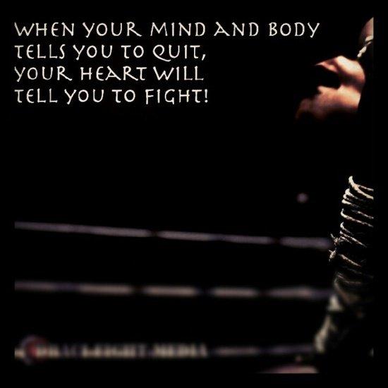 muay thai fighting quotes relationship
