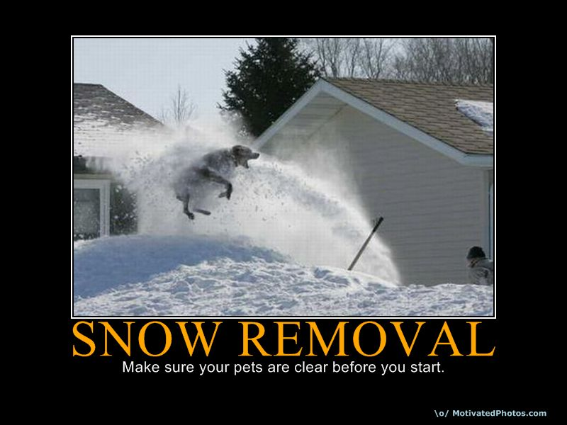 Quotes About Snow Shoveling. QuotesGram