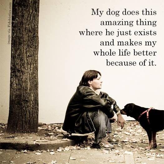 My Amazing: Quotes My Life Is Amazing. QuotesGram