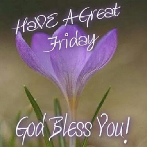 Fantastic Friday Quotes: Have A Great Friday Quotes. QuotesGram