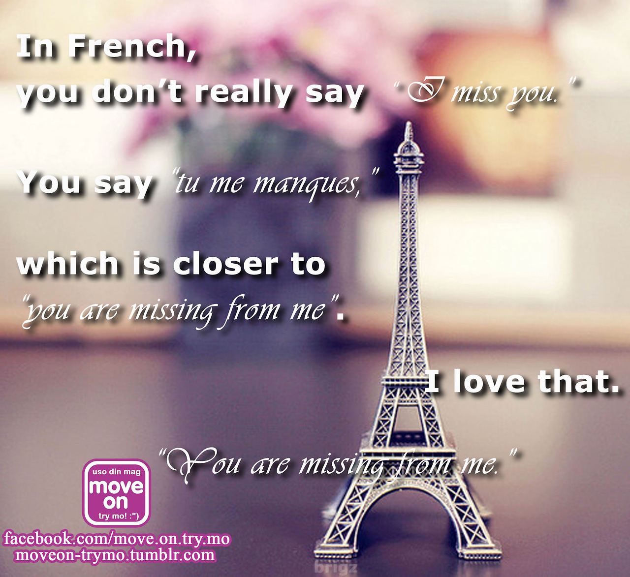 how to say you guys are dating in french