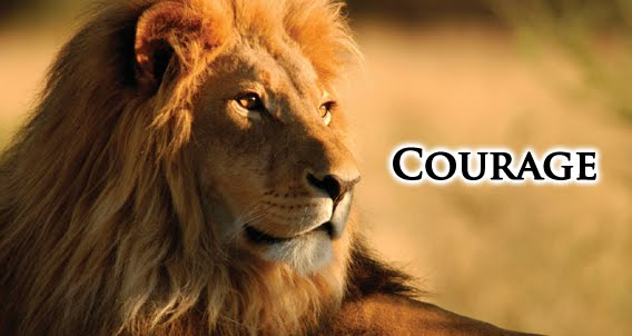 quotes about courage and lions quotesgram