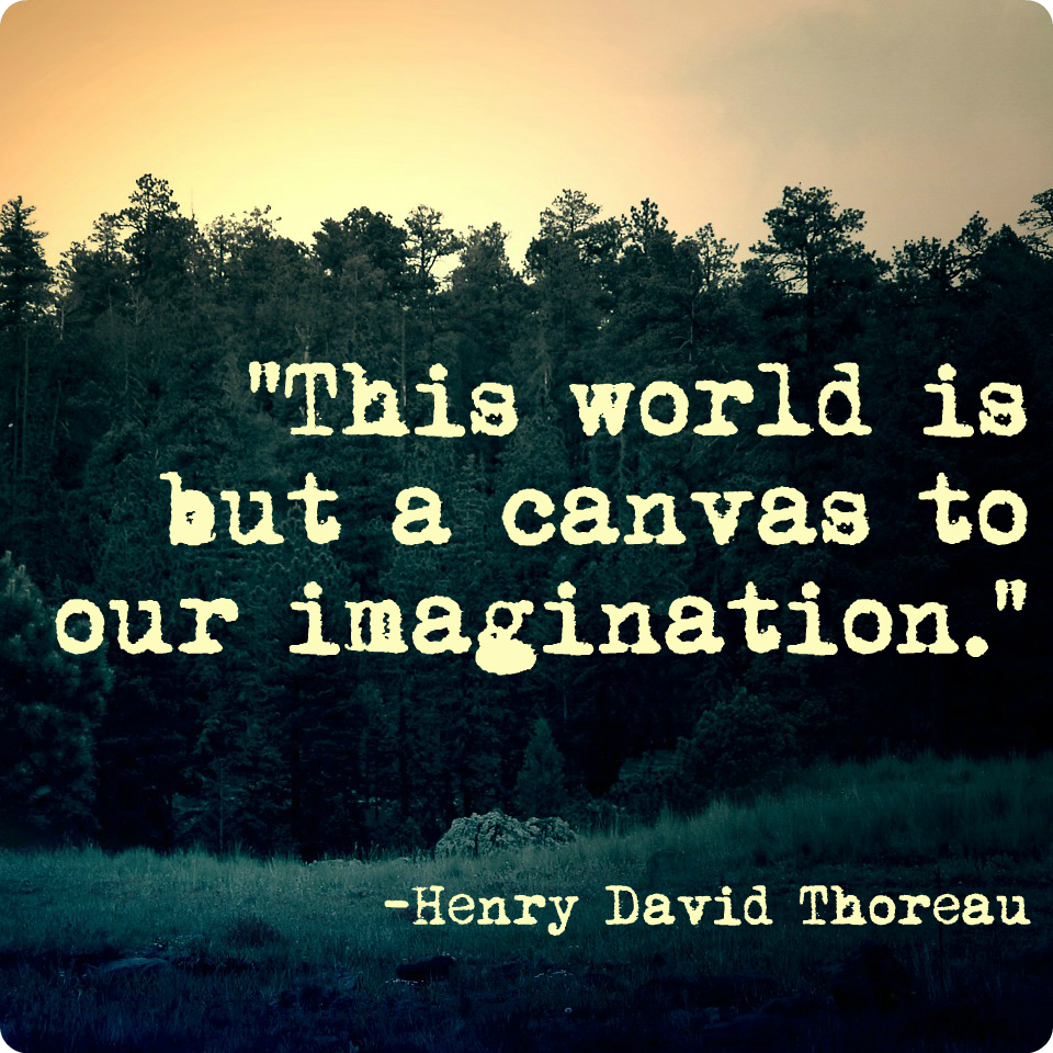 henry david thoreau transcendentalist Henry david thoreau (1817 - 1862) was an american philosopher, naturalist, writer and political activist of the early modern period he was involved with the 19th.