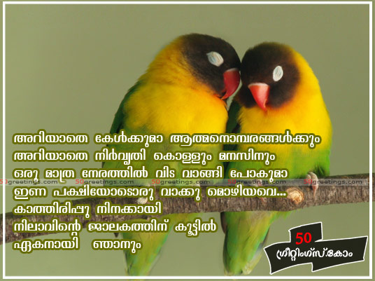 Quotes About Love And Birds Quotesgram: Phoenix Bird Quotes Sayings. QuotesGram