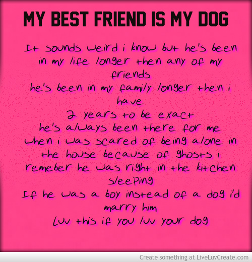 My Dog Loves Me Quotes: Quotes I Love My Chihuahua. QuotesGram