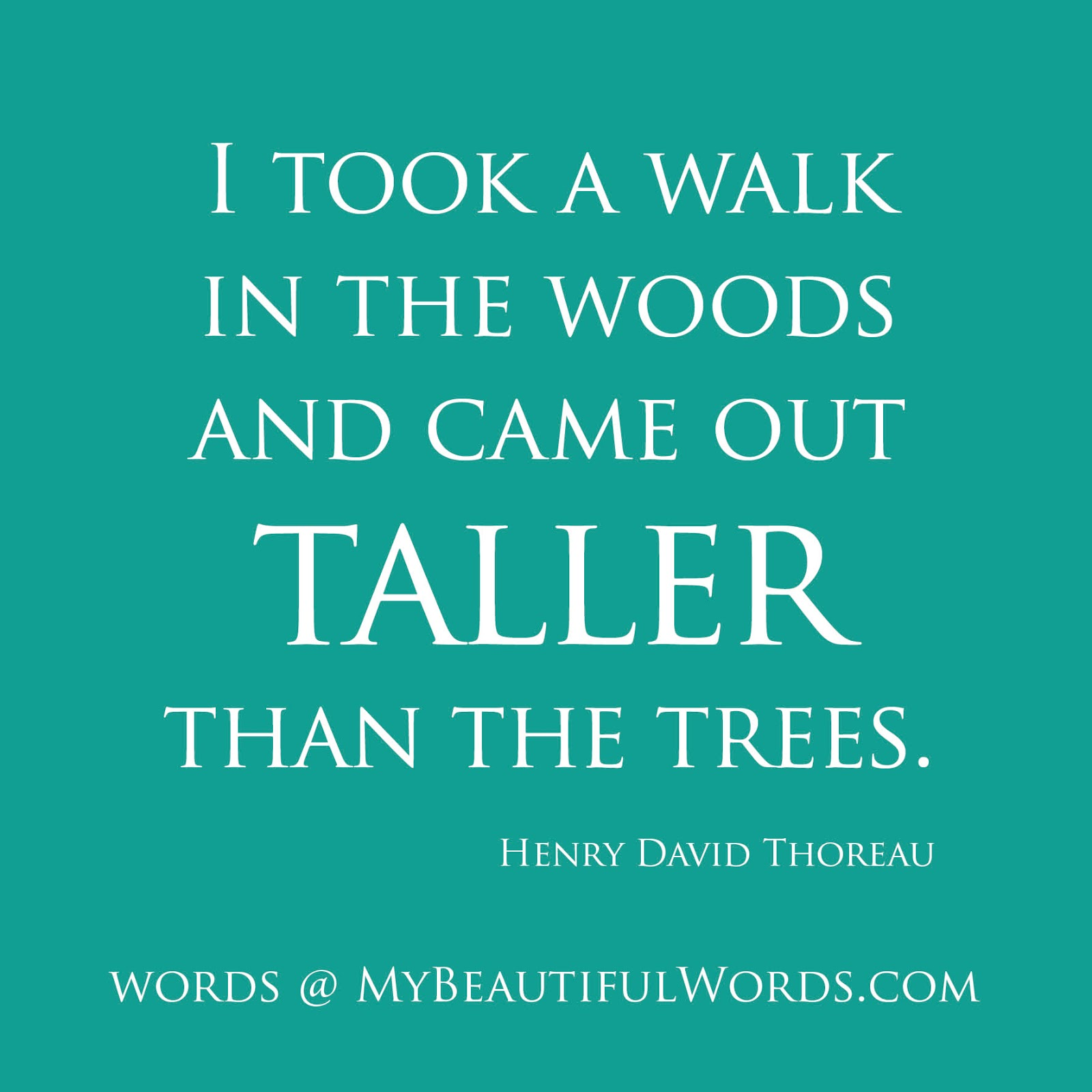 Maya Angelou Quote People Will For Get: Into The Woods Quotes. QuotesGram