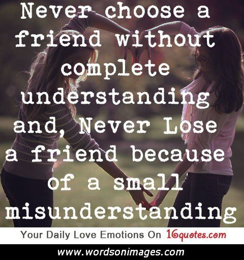 Quotes About Losing Friends And Not Caring: Quotes About Losing A Friend. QuotesGram