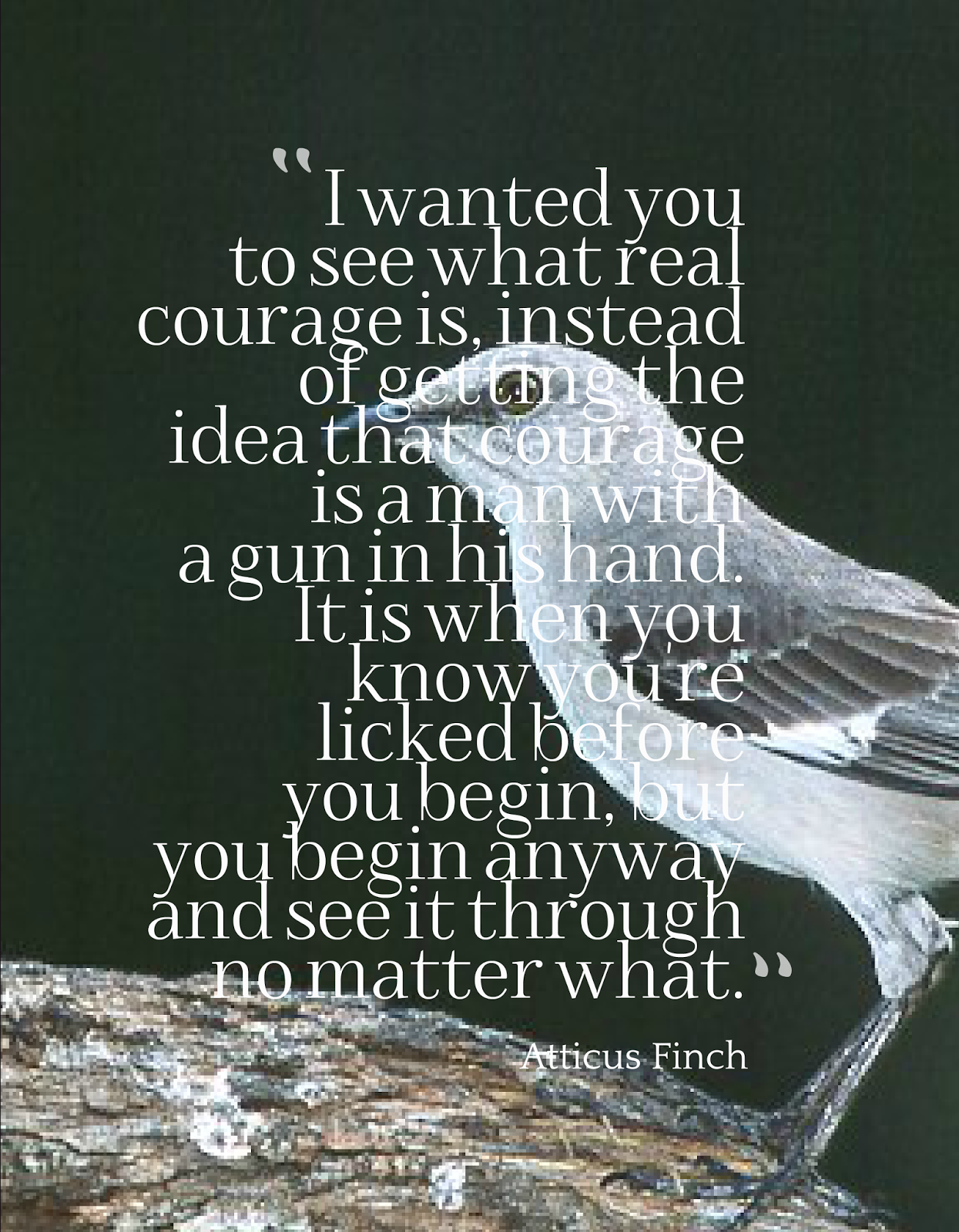 courage in to kill a mockingbird Harper lee's to kill a mockingbird courage is the quality of mind that enables one to face danger with confidence, resolution, and gain a firm control of oneself .