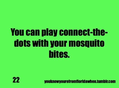 Florida Mosquito Quotes. QuotesGram