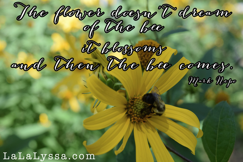 Bee Quotes: Honey Bee Famous Quotes. QuotesGram