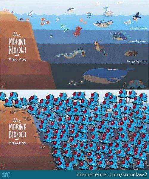 Marine Biology Quotes Funny. QuotesGram