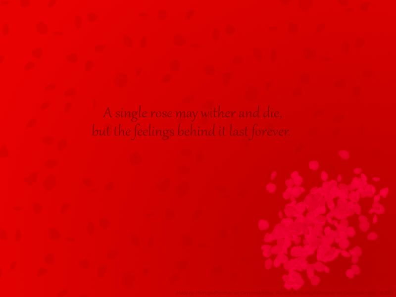 Quotes About Rose Petals. QuotesGram
