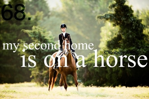 equestrian quotes tumblr - photo #25