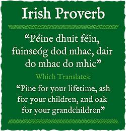 Irish Death Quotes Quotesgram