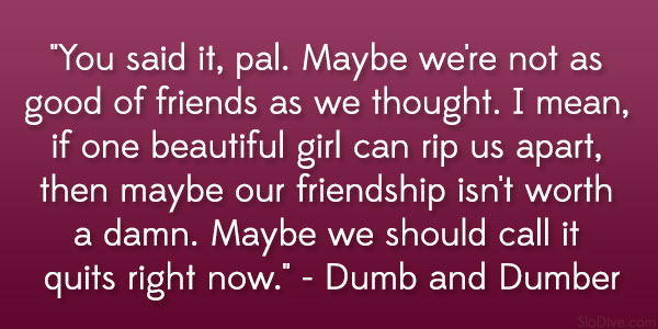 Stupid Quotes About Friends. QuotesGram