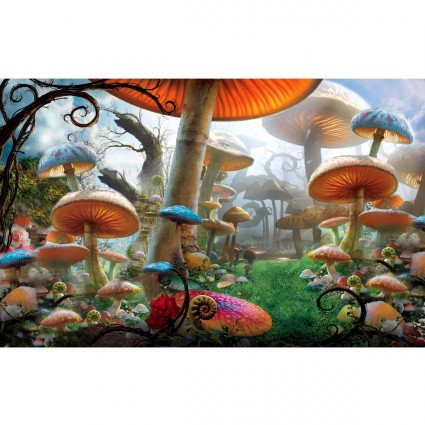 mushroom alice in wonderland quotes quotesgram. Black Bedroom Furniture Sets. Home Design Ideas