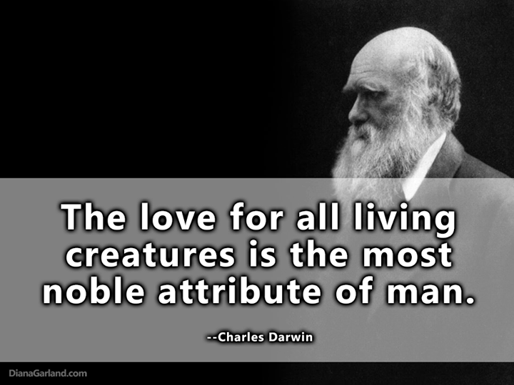 darwin and carrie relationship poems