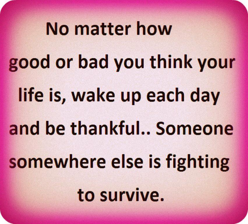 Inspirational Survival Quotes