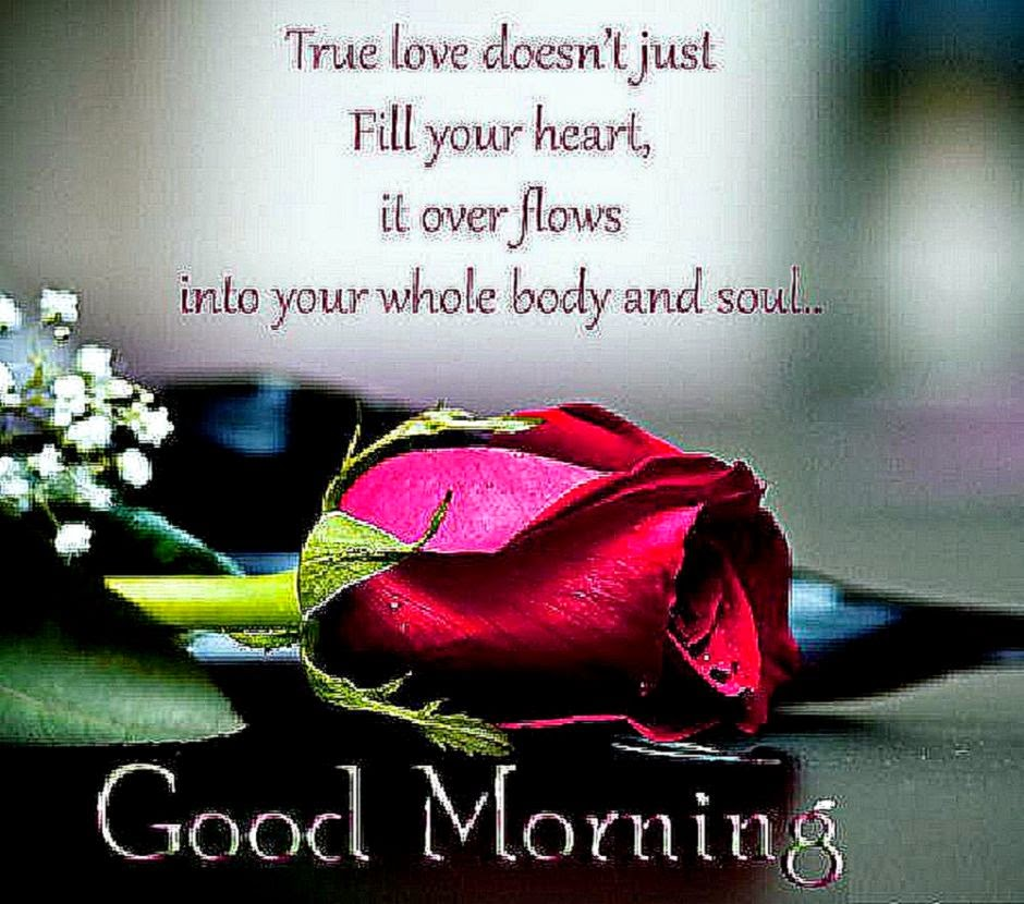 Quotes Morning: Beautiful Morning Quotes. QuotesGram