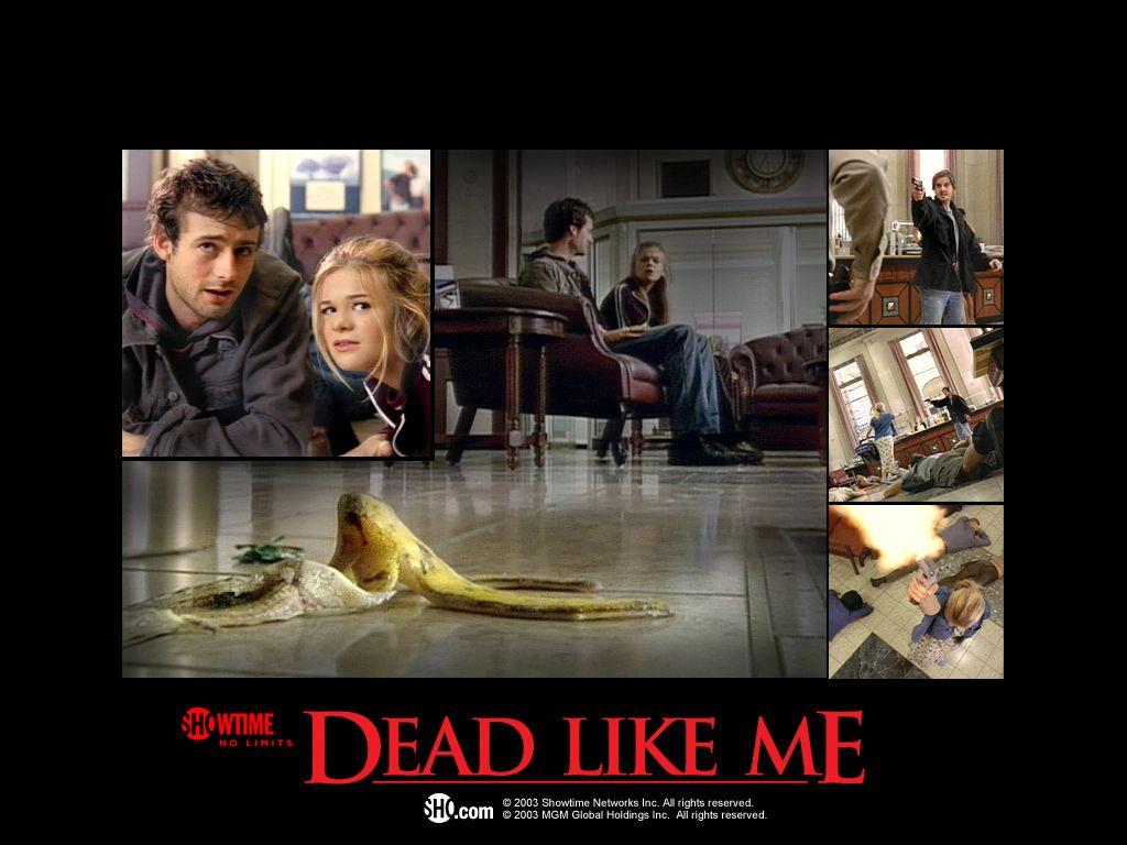 Dead Like Me Quotes Senior. QuotesGram