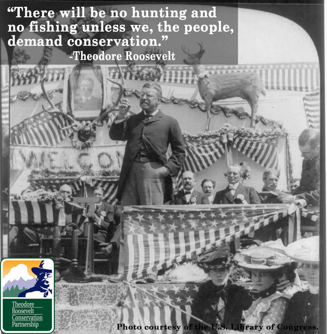 the role of theodore roosevelt in helping toconserveour environment Theodore roosevelt this paper will outline president theodore roosevelt's role in  helping toconserveour environment during his administration ( our natural.