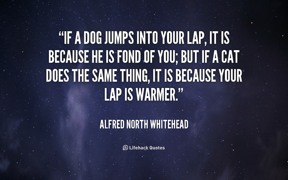 alfred north whitehead quotes - photo #40