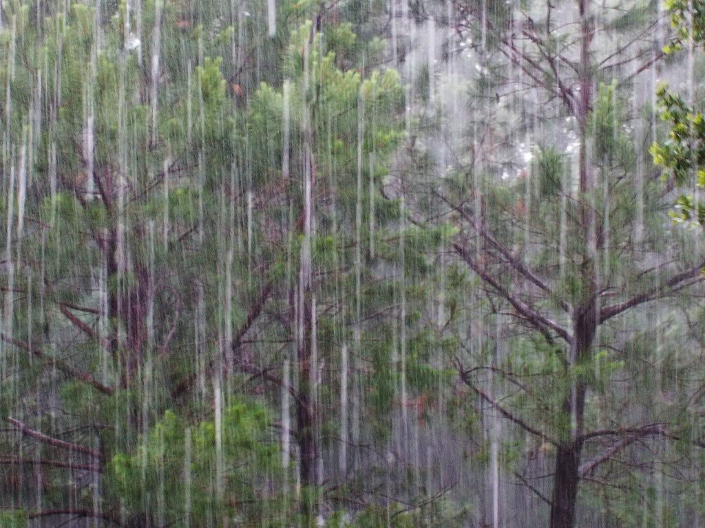 monsoon inspirational quotes