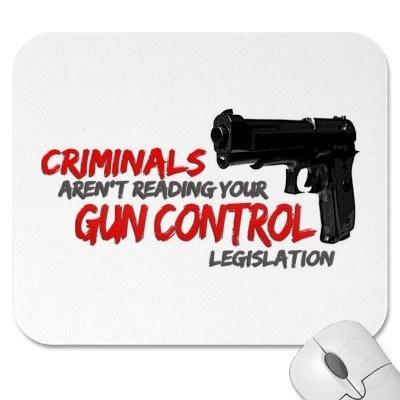 controversial gun control essay