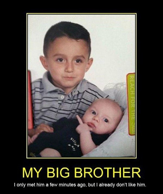 Funny Quotes About Siblings: Funny Quotes About Sibling Rivalry. QuotesGram