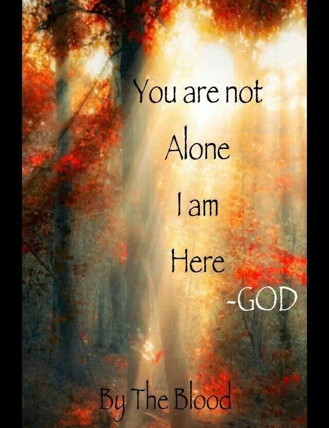 I Am Not Alone Quotes. QuotesGram